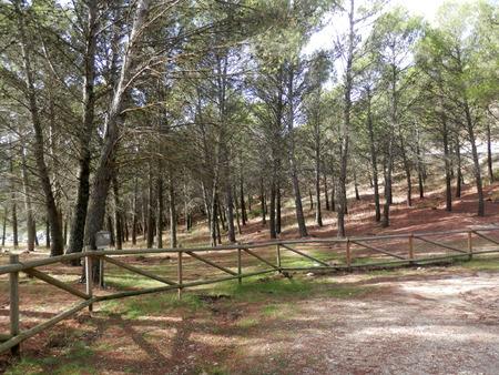 picknick: Rural Area