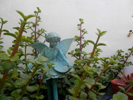 amongst: Blue fairy girl amongst succulent plants in flowerpot Stock Photo