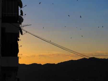 satelite: Silhouette of satelite dishes and swallows at dawn near Alora Andalucia Stock Photo