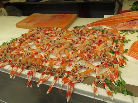 malaga: Nephrops norvegicus or cigalas on display at Malaga Atarazana market