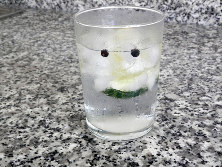 tonic: Gin and Tonic with cucumber and juniper berries