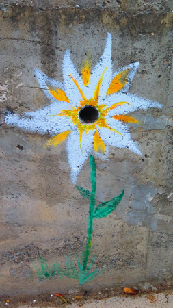 wall paintings: Innovative use of Painted flower around drainage hole on concrete wall Stock Photo