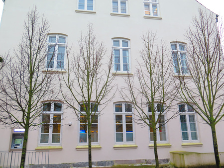 trees on winters day agaist house with many windows