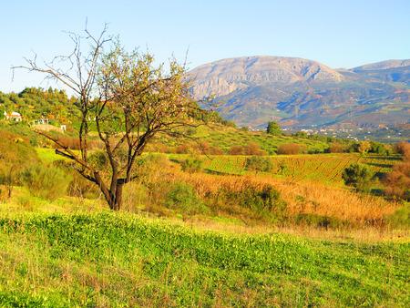 mediterranean culture: Rural view of Sierra Huma mountain in Sunshine