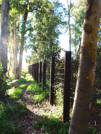 girder: Hazy sunshine over Rural path and girder fence Stock Photo