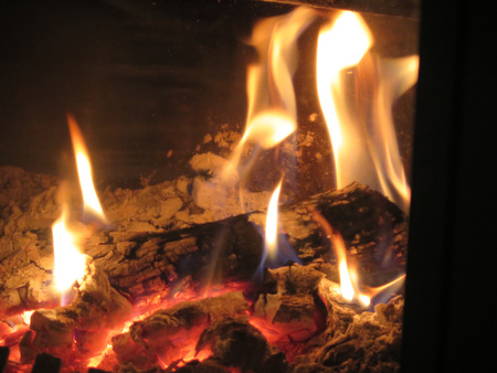 woodburner: Olive tree Logs burning bright in wood burner
