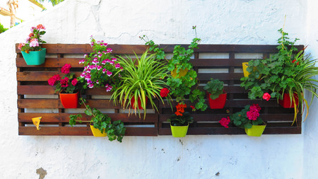 Flower pots on brown Painted wooden pallets