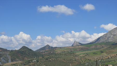 olive groves: Panoramic view of hills, peaks, clouds and olive groves