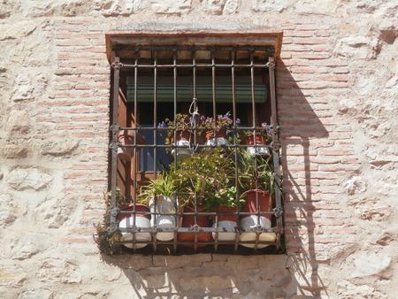 Flores detrás de la parrilla de hierro forjado o ventana en bares, en Jaen, Andalucía Foto de archivo