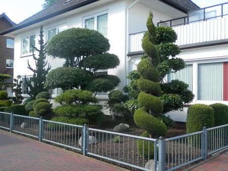 topiary: Decorative miniature Topiary in Village Street Stock Photo