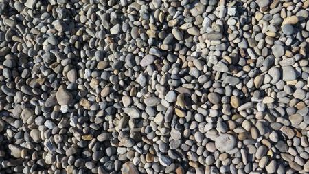 tejas: Closeup of shingles on beach in Devon Foto de archivo