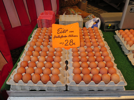 munster: Trays of fresh eggs for sale in market in Munster, Germany Stock Photo