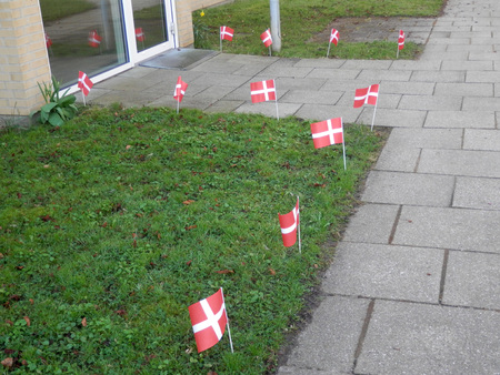 Danish paper flags in grass verge for birthday celebration