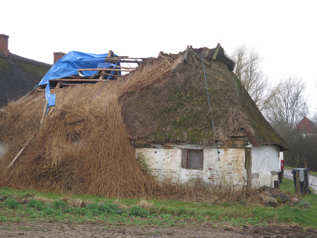 Collapsed thatched roof on farmhouse in southern Denmark