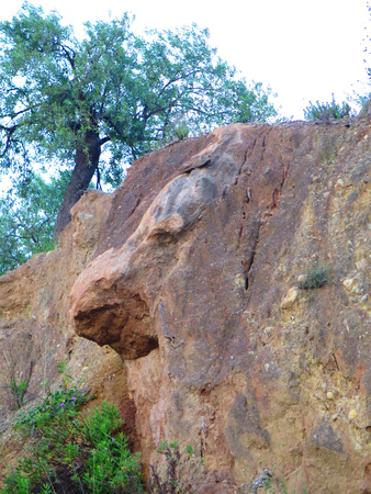 Rock face with big nose on roadside embankment near Andalusian Village of Alora