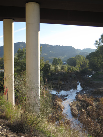 River running through reeds and weeds under roadbridge on a sunny December morning in Andalusia 版權商用圖片