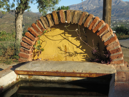 Large brick built rustic cattle drinking trough under shading olive trees in rural Andalusia