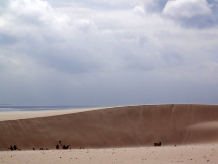 Sand dunes on windy day at Punto Paloma near Tarifa, Andalusia Banque d'images - 121265975