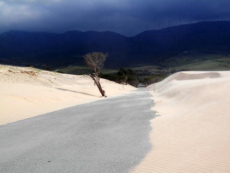 Sand dunes on windy day at Punto Paloma near Tarifa, Andalusia Banque d'images - 121265978