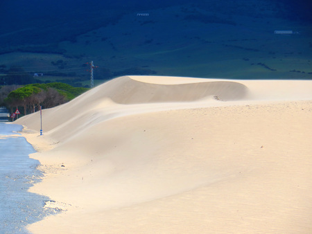 Sand dunes on windy day at Punto Paloma near Tarifa, Andalusia Banque d'images - 123242025
