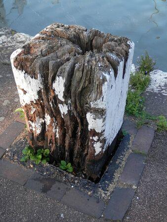 Large worn wooden mooring stump on Grand Union Canal, England 版權商用圖片