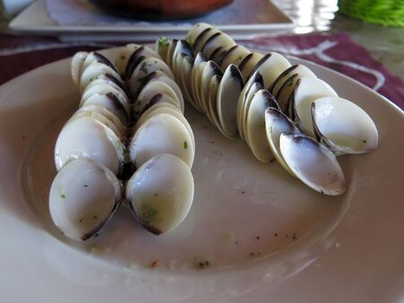 Neatly arranged clam shells on plate after delicious meal at Andalusian restaurant