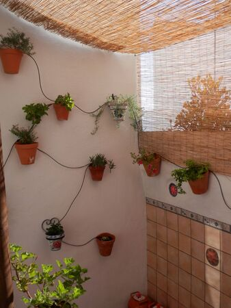 Andalusian flower pots hanging on white wall with self watering pipes 版權商用圖片