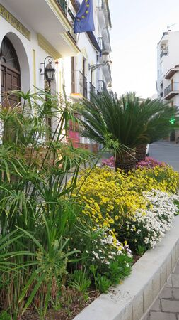 Flowerbed with colorful display of plants and palms outside Alora Town Hall, Spain
