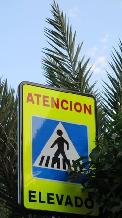 Elevated pedestrian crossing warning sign partly covered by palm leaves Archivio Fotografico - 147899623