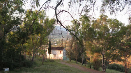 Old abandoned house in eucalyptus shaded ground in Andalusian village Editoriali