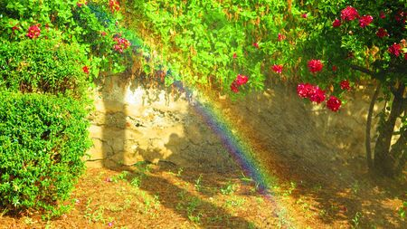 Sprinklers watering shrubs and plants on embankment creating rainbow in Andalusian warm spring sunshine