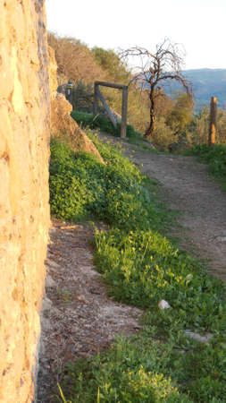 Country path below rough wall on the outskirts of Alora Andalusia one sunny morning