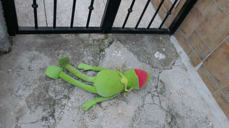 Discarded green frog doll outside gate of Andalusian village house