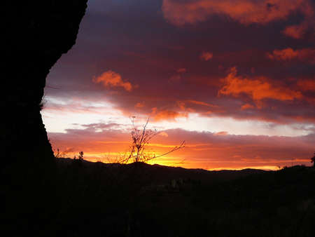 Dramatic golden red dawn silhouetting trees in Andalusian countryside