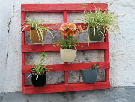 Flower pots on red painted wooden pallet in Village, Andalusia - Spain Stockfoto