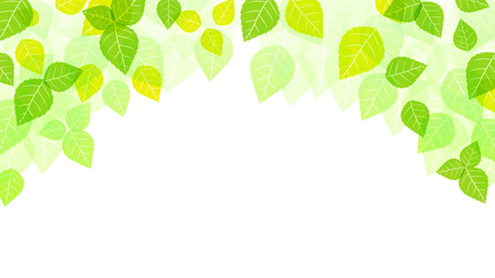 Leaves Background, Spring Background, Nature, Season
