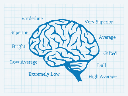 IQ, Intelligence Quotient, Brain, Mentality