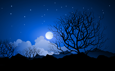 Nachtlandschaft mit Sternen- und Wolkenhimmel