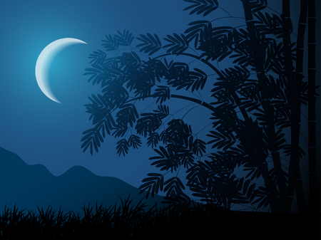 night landscape with bamboo and moon