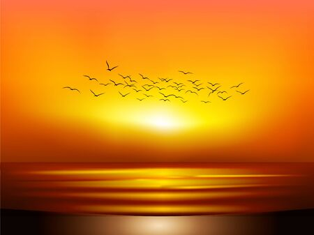 sunset at sea with flying sea gulls Vectores