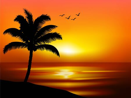 sunset scenery at beach with one palm tree Banque d'images - 128375799