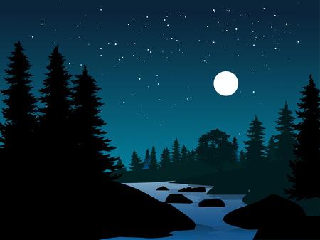 night scene at river with pine trees
