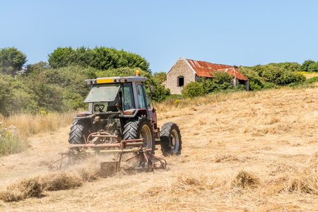 Tractor cutting the grass in a very dry field
