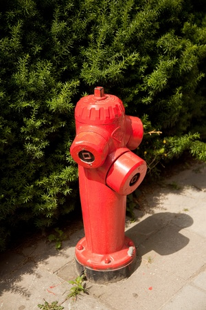 Fire hydrant Imagens