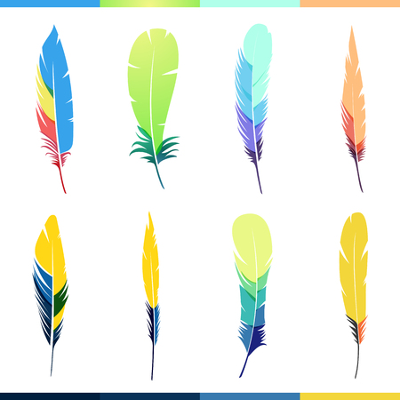 feather: Vector plumas de colores establecidos. Plumas de aves pintadas en los patrones de colores