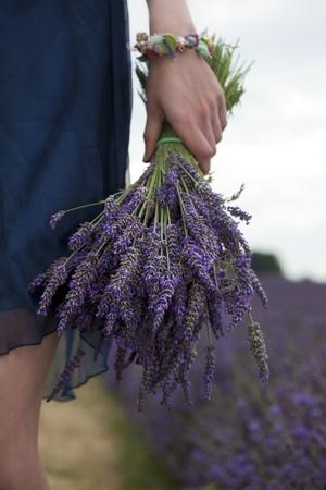 fragrance: Bunch of Lavender