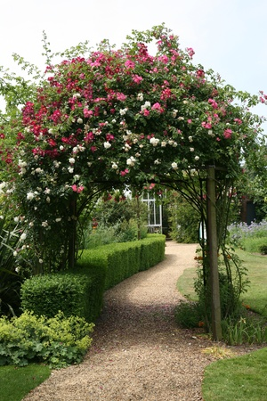 두서없는: 영어 나라 정원에서 장미 아치