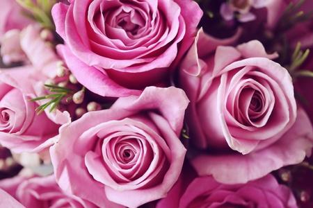 Rose Posy Wedding Bouquet 스톡 콘텐츠