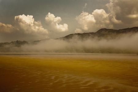 estuary: Misty Estuary Landscape