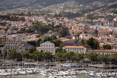 Port of Funchal, Madeira photo